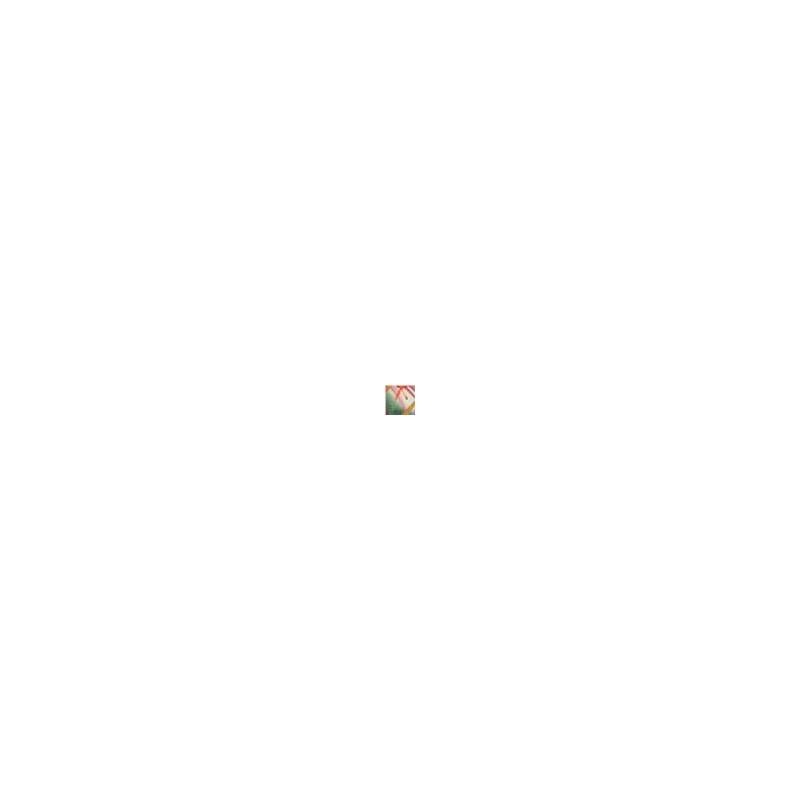 Calcinha básica em microfibra estampada com lacinho B24.B GOIABA VARIADO
