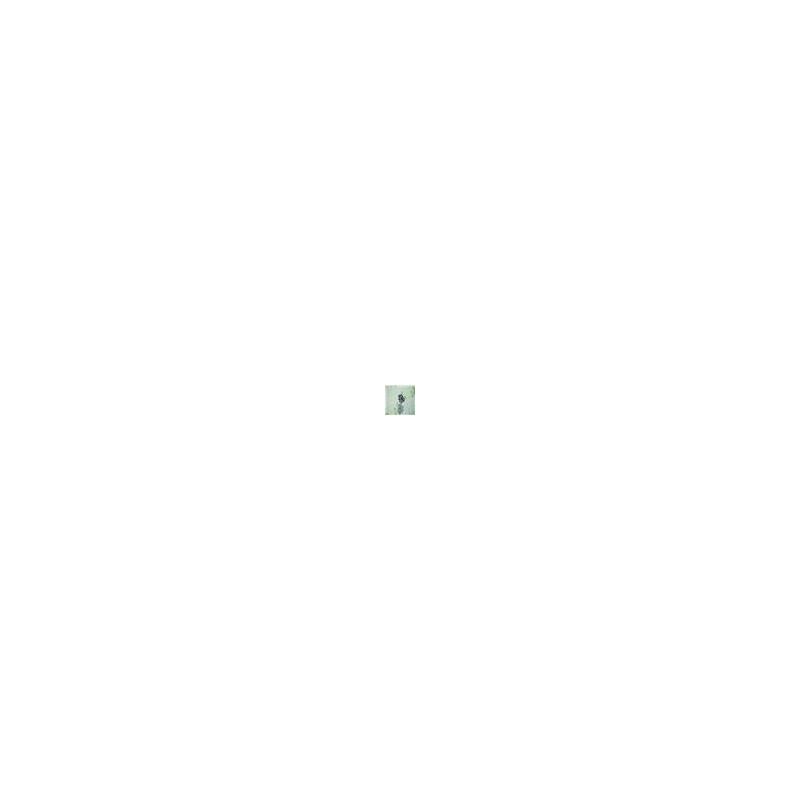 Calcinha em microfibra estampada com renda e lacinho B166.A BRANCO VARIADO