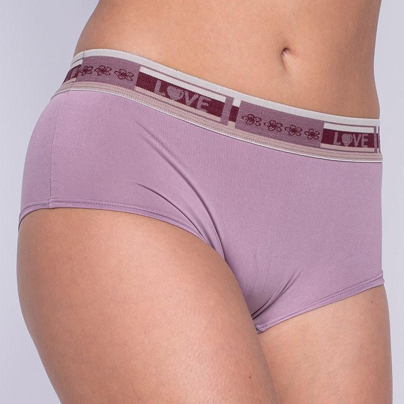 Cueca Feminina Elastico Largo Super Conforto A05.B UVA